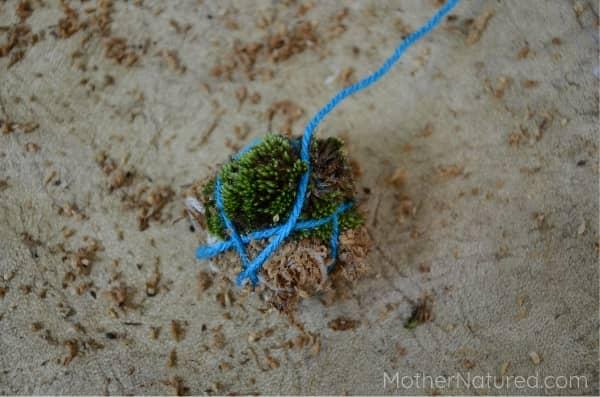 Earth Moss Ball - Add moss