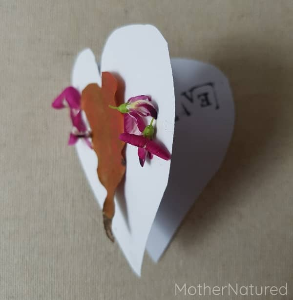 Heart Mother's Day nature Card