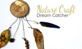 Nature Dreamcatcher Craft