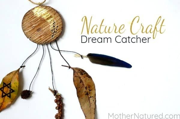 DIY Stunning Nature Dreamcatcher Craft