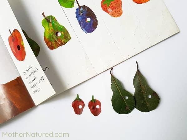 Fruit Art The Very Hungry Caterpillar