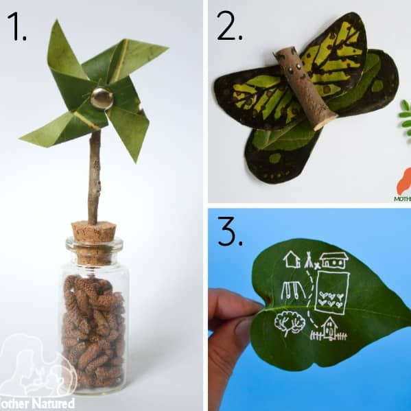 Leaf Craft and Activities