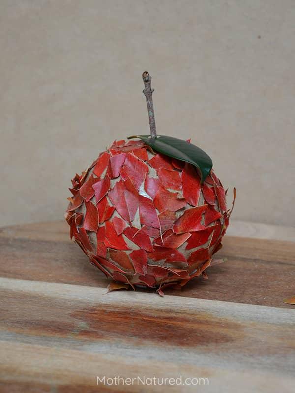 Nature apple craft