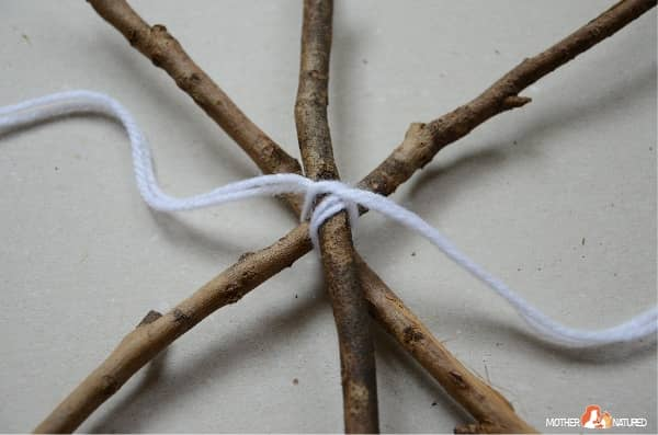 Make a stick spider web