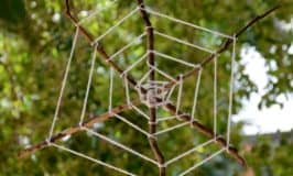 Stick spider web: spooktacular weaving fun!