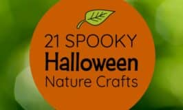 21 Halloween Nature Crafts you won't believe you can make!