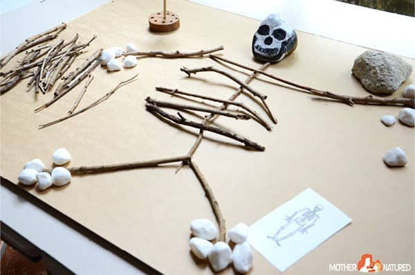 Make a SKELETON with Natural Materials