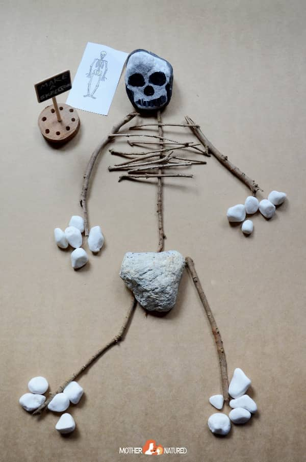 Stick Skeleton activity