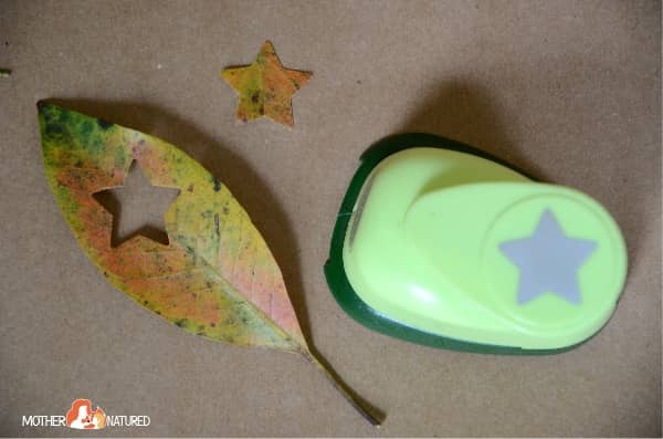 Hole punch leaves