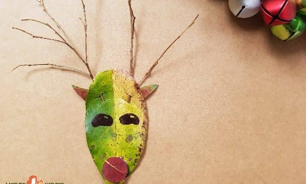 A reindeer nature craft that will help embrace individuality