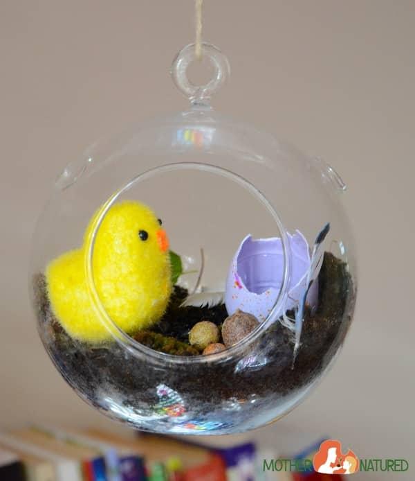 Chick Terrarium
