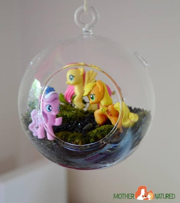 Pony Terrarium