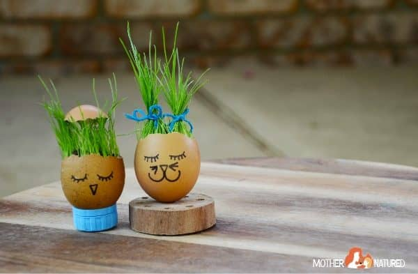 Egg Grass Heads: A craft your kids will GROW wild for!