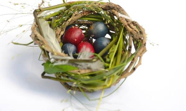 How to Make a Bird Nest by Weaving Natural Materials