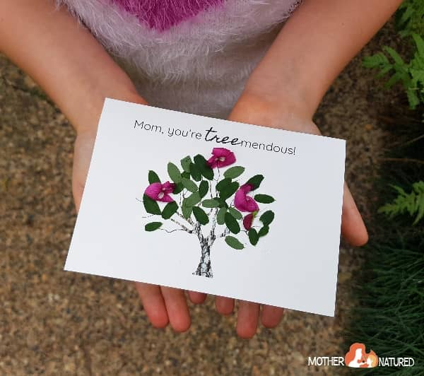 Mother's Day Nature Cards
