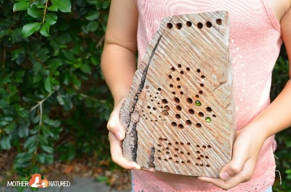 Bug hotel made by kids