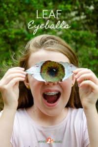 Leaf Eyeball Nature Craft