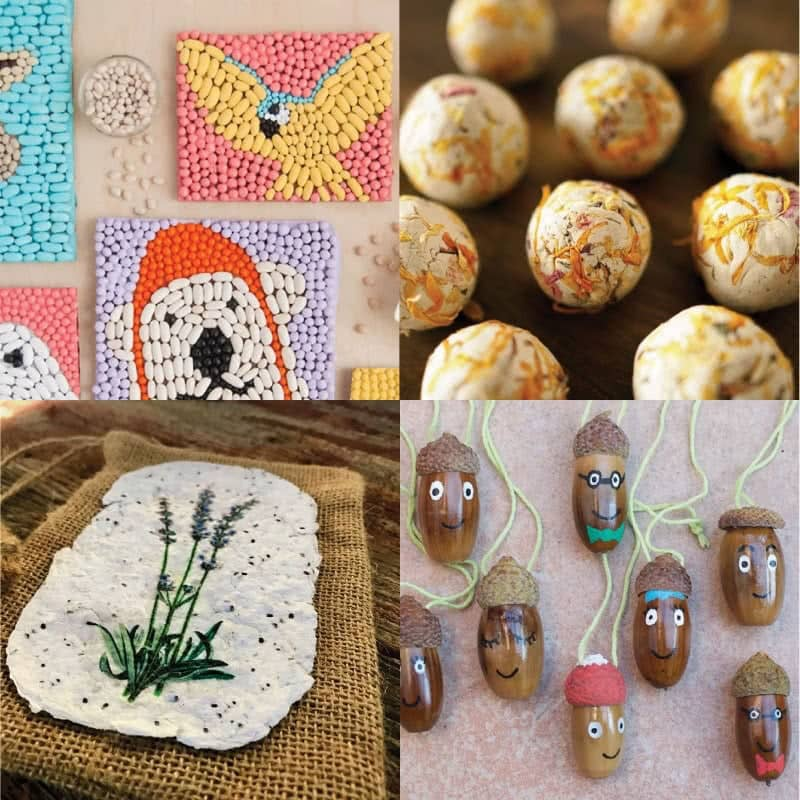 Bean nature crafts for kids