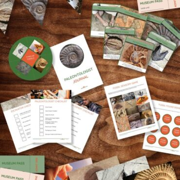 Fossil Printables